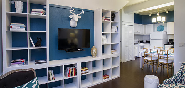 Flat 9 Living Area • 3rd Street Flats