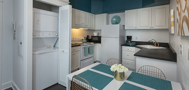 Flat 9 Kitchen • 3rd Street Flats